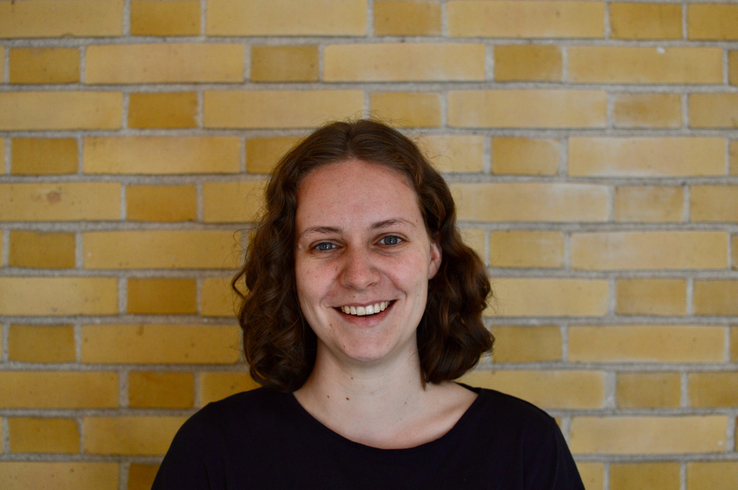 Annelies Faber Holstein Restauratie Architectuur